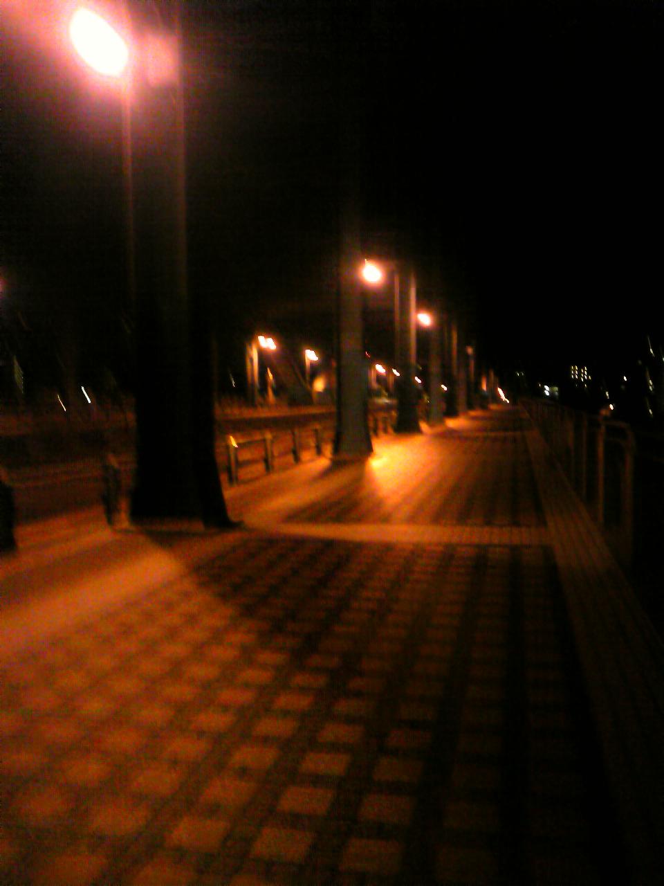 三時半スタート自走でヤビツリベンジ